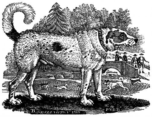 "Thomas Bewick, ""Newfoundland Dog"""